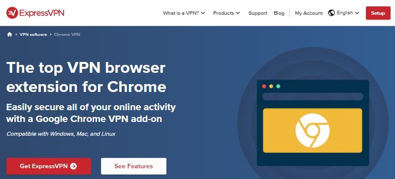 Chrome VPN 翻墙插件
