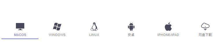 光年VPN支持平台